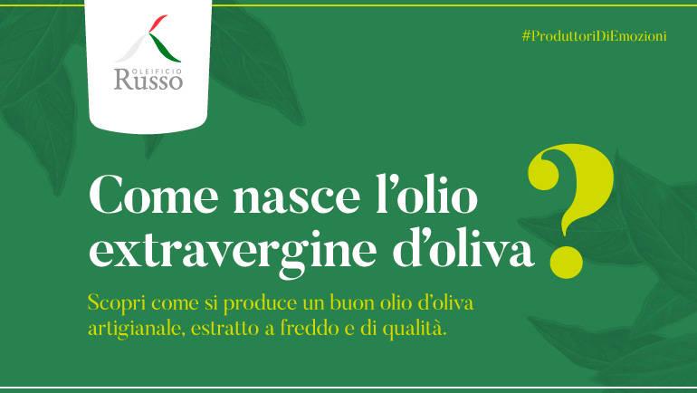 Come nasce l'olio extra vergine d'oliva